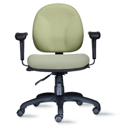 Agent Low Back Task Chair