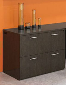 Visions Two Drawer Lateral File